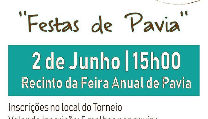 ITorneiodaMalhaFestasdePavia_F_0_1591376139.