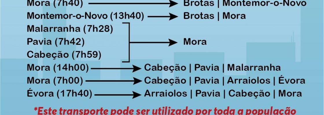 RodoviriadoAlentejorepecarreirasnoConcelhodeMora_F_0_1591345985.