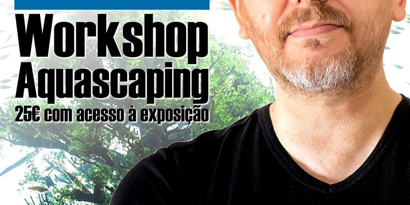 WorkshopAquascaping_F_0_1591376315.