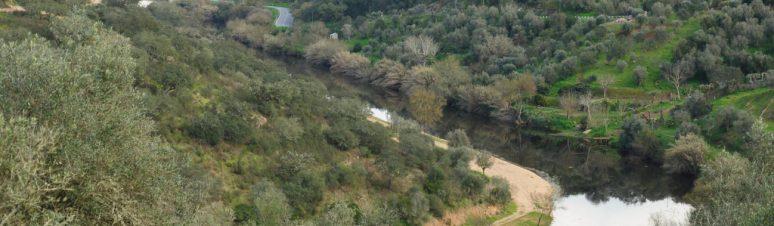 Pista de Pesca de Pavia