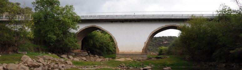 Ponte Medieval de Pavia