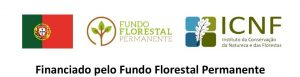 Financiando pelo Fundo Florestal Permanente