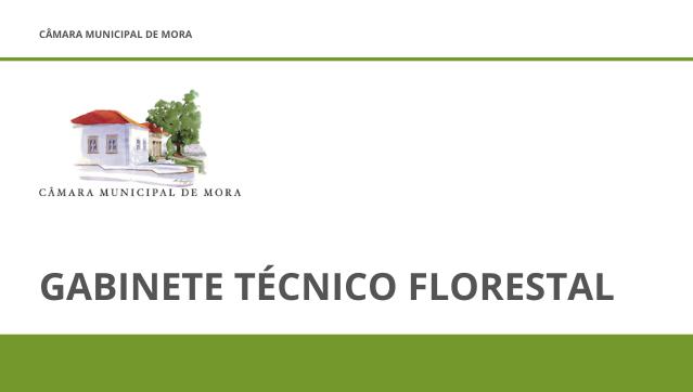Gabinete Técnico Florestal