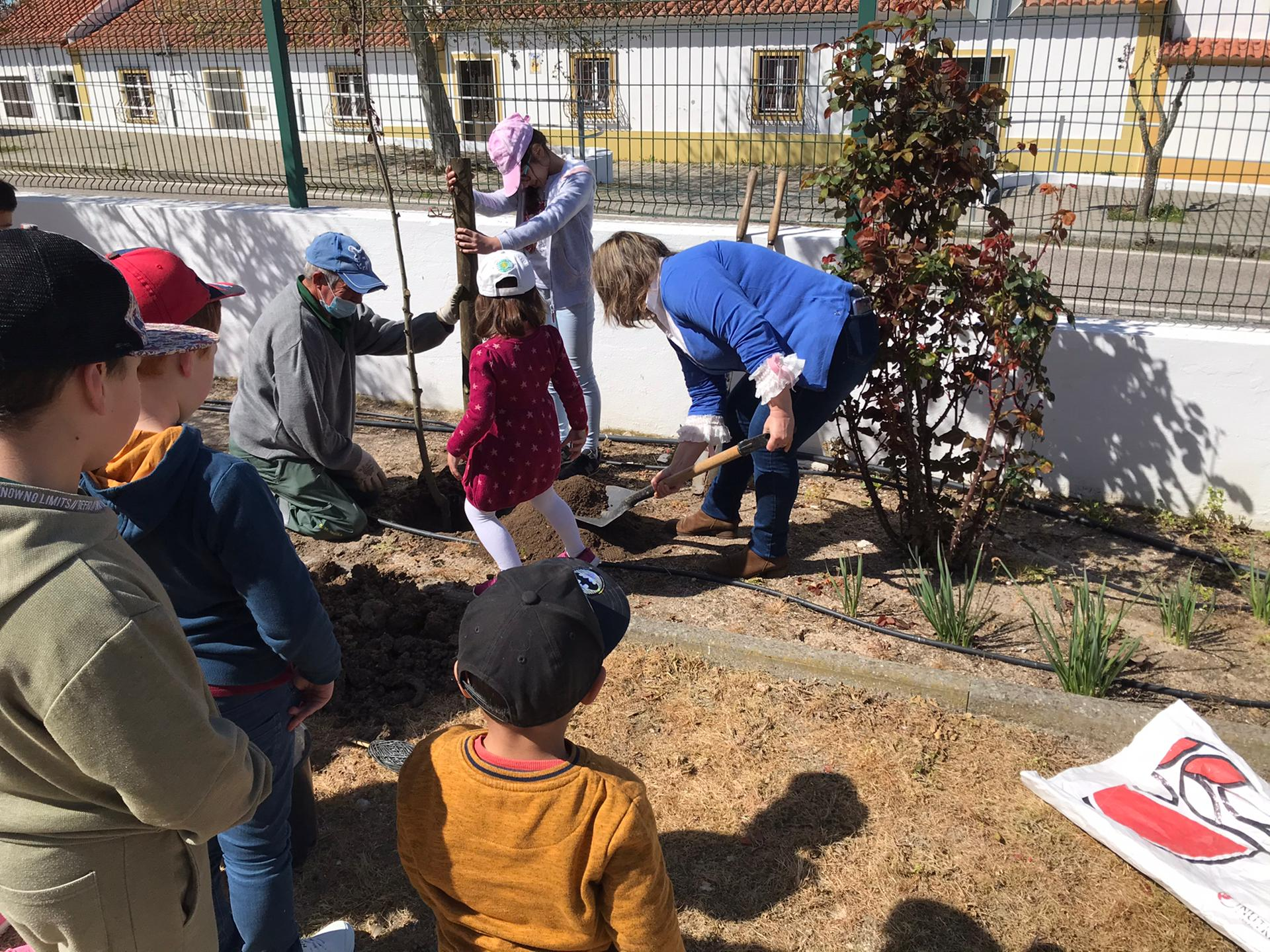 Câmara Municipal de Mora assinala o Dia Mundial da Árvore, da Floresta e da Poesia