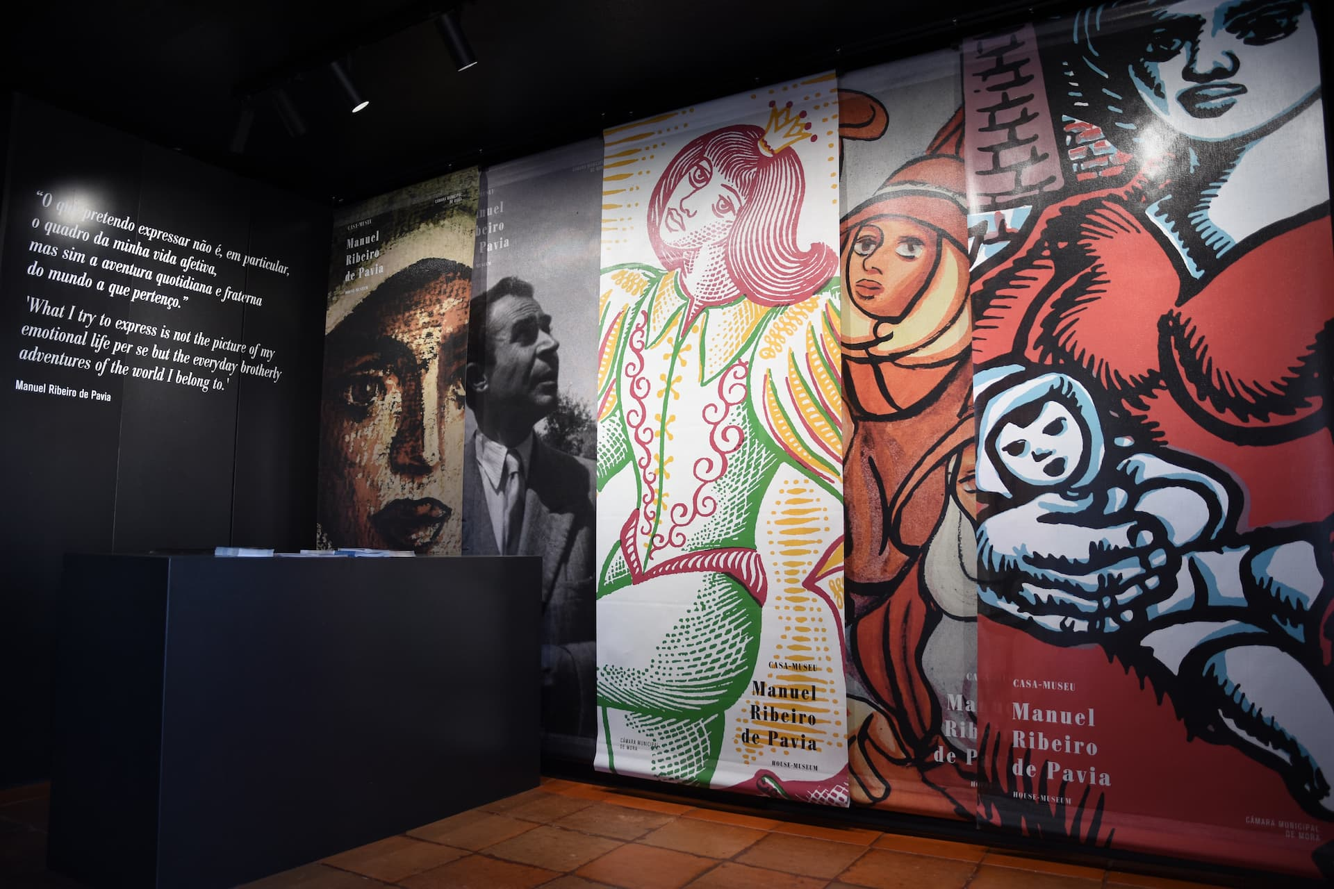 Casa-Museu Manuel Ribeiro de Pavia requalificada